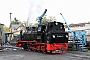 """Henschel 24367 - RüBB """"99 4801-9"""" 19.10.2019 - Putbus (Rügen), BahnhofRegine Meier"""