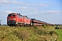 """Henschel 31838 - DB Fernverkehr """"218 380-4"""" 10.10.2015 - Niebüll, Bahnübergang TriangelJens Vollertsen"""