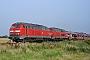 "Krauss-Maffei 19497 - DB Autozug ""215 913-5"" 20.08.2005 - Niebüll, Bahnübergang TriangelJens Vollertsen"