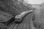 "Krupp 5057 - DB ""215 036-5"" 04.03.1991 - Kall-UrftMalte Werning"